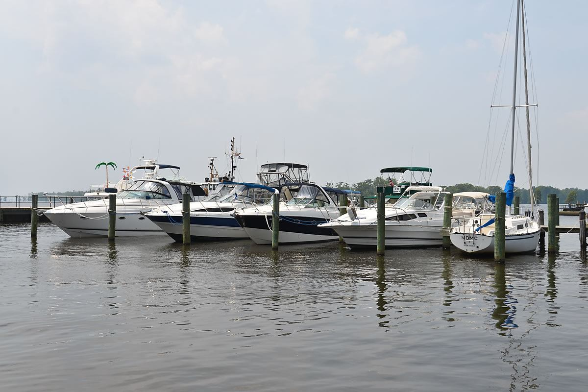 Edenton Harbor