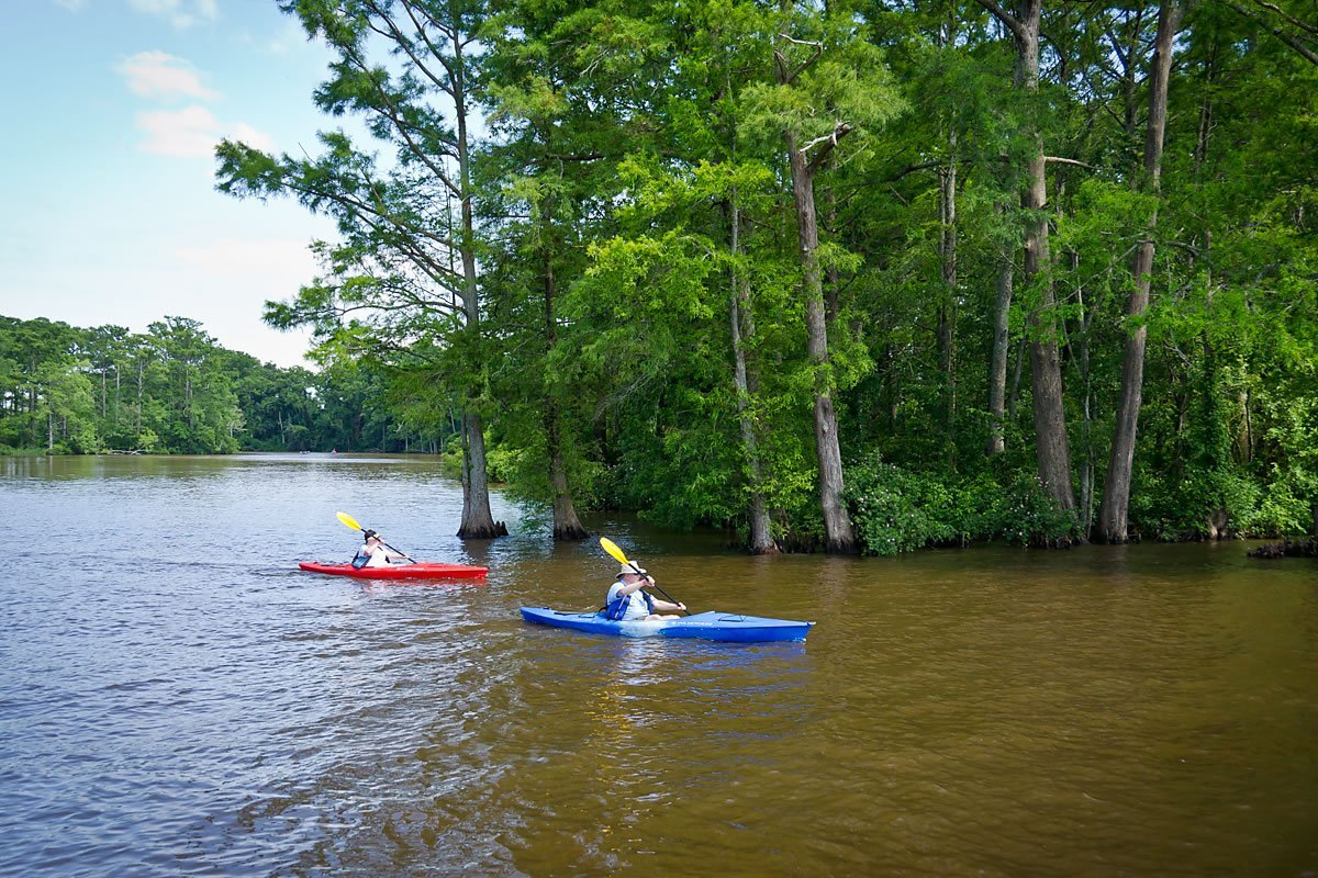 Kayaking on Queen Anne Creek